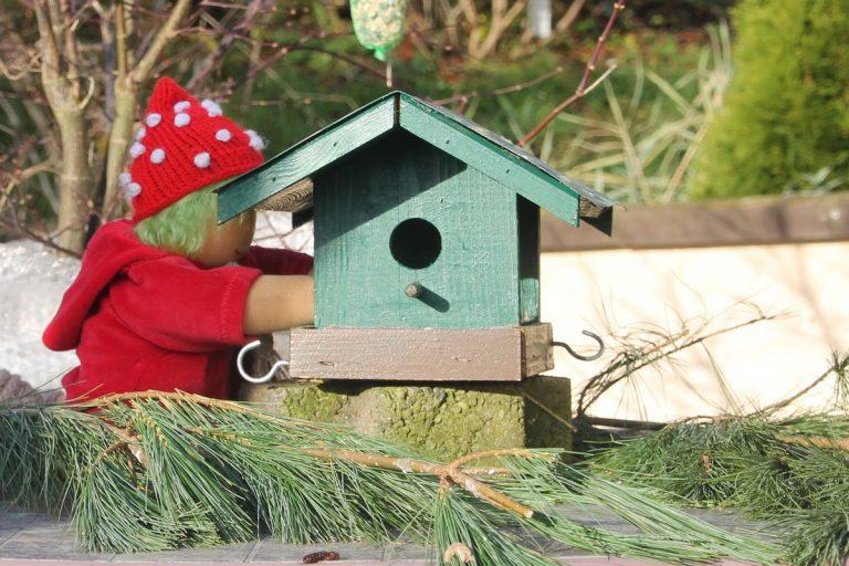 Aggi und das Vogelhaus