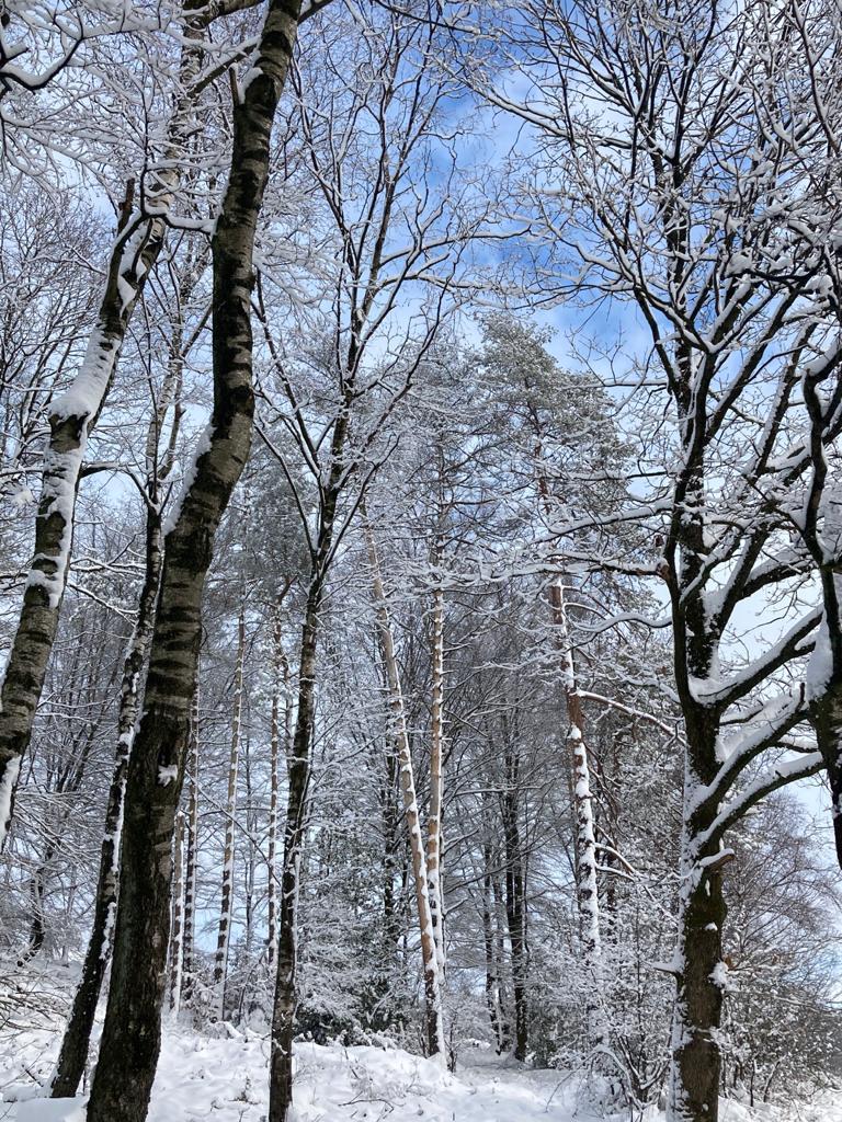 Aggi und der Winter